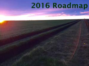 2016 Roadmap